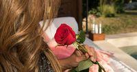 Was sagt die erste Rose der Bachelorette aus?