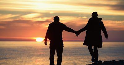 Ewige Liebe: Mann pflanzt Sonnenblumenfeld für verstorbene Ehefrau