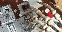 Dieses Skelett verarscht so ziemlich jeden auf Instagram!