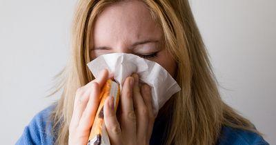 Warum wir ausgerechnet in unserem Urlaub immer krank werden