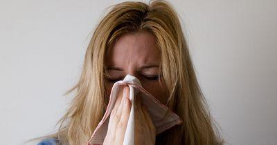 5 Hausmittel gegen deine Erkältung!