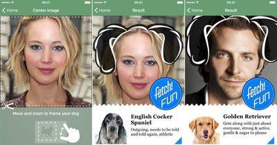 Unglaublich, was du mit dieser App herausfinden kannst
