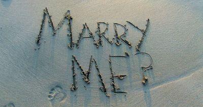 Das sind die schönsten Heiratsanträge