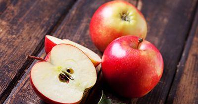 DAS solltet ihr lesen, bevor ihr das nächste Mal in einen Apfel beißt!