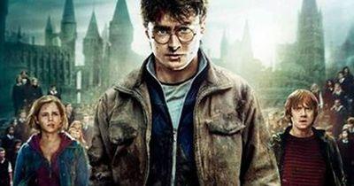 Harry Potter Stuntman querschnittsgelähmt