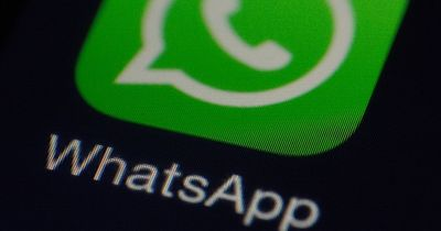Hammer News für WhatsApp-User