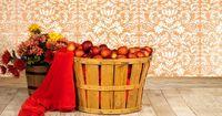 Der Apfelkorb: 5 Mädchen, 5 Äpfel und ein Korb