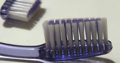 Zahnbürste wird zum mega-hippen Accessoire