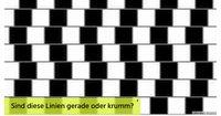 Schaffst du es dich von diesen optischen Illusionen nicht austricksen zu lassen?