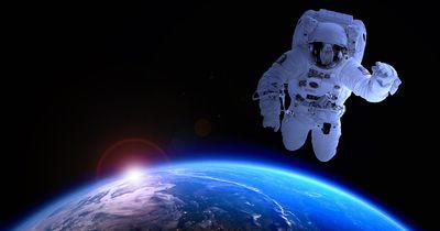 Hast du das Zeug zum Astronauten?