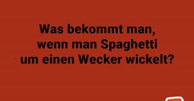 Spaghetti-Wecker