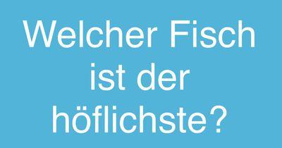 Höflicher Fisch!