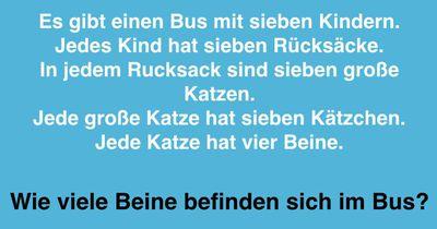 Wie viele Beine befinden sich im Bus?