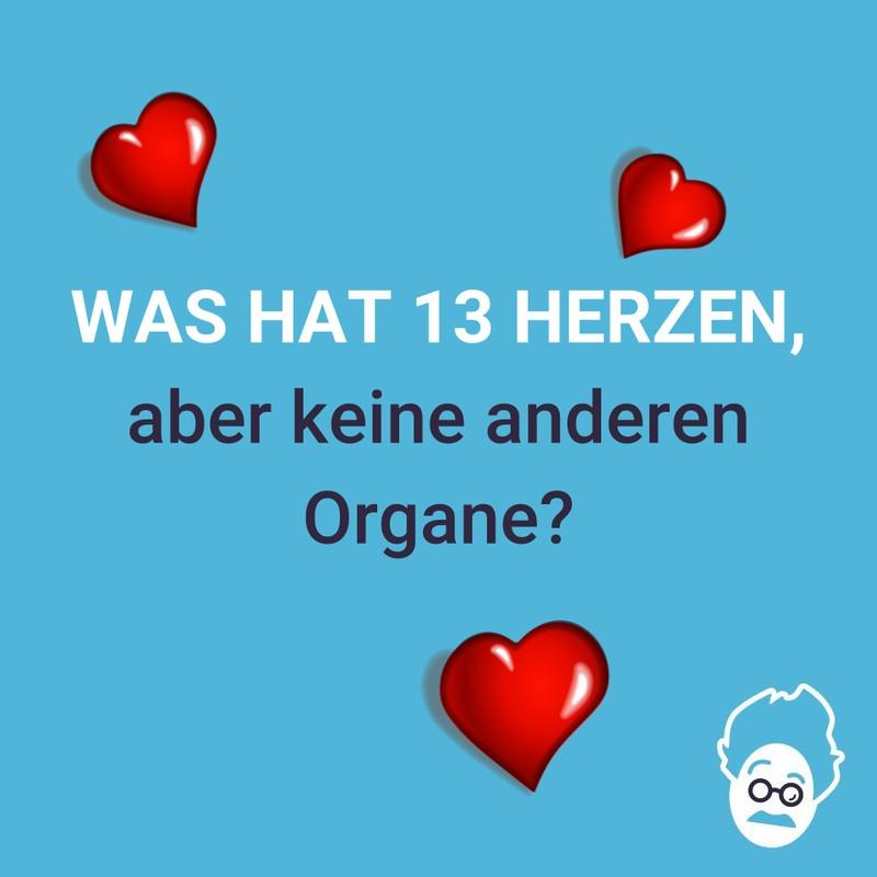 Dreizehn Herzen